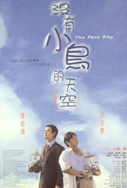 Постер фильма Бледное небо (1998)