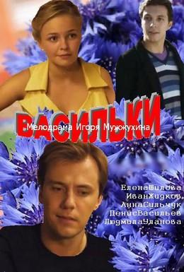 Постер фильма Васильки (2013)