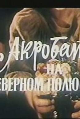 Постер фильма Акробат на Северном полюсе (1984)