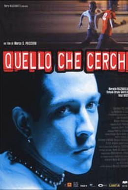 Постер фильма Что ищет он (2002)