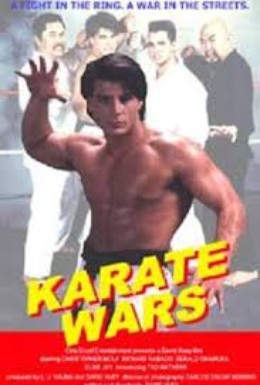 Постер фильма Войны каратэ (1991)