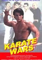 Войны каратэ (1991)