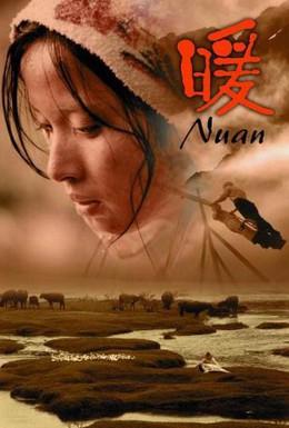 Постер фильма Девушка Нуань (2003)