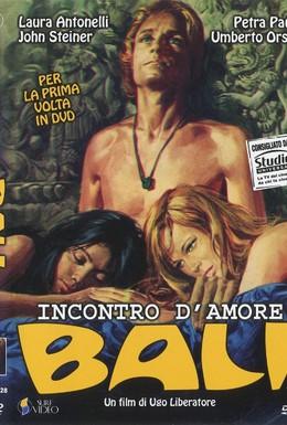 Постер фильма Любовная встреча (1970)