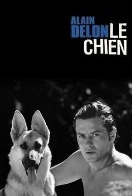 Постер фильма Пес (1962)