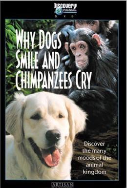 Постер фильма Почему собаки улыбаются и шимпанзе плачут (1999)