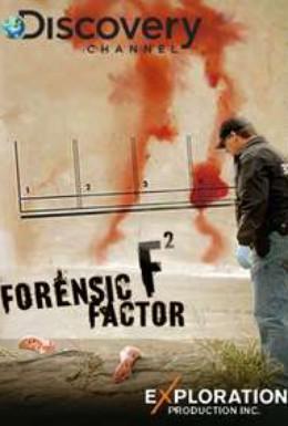 Постер фильма Мир криминалистики (2008)