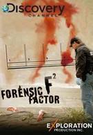 Мир криминалистики (2008)