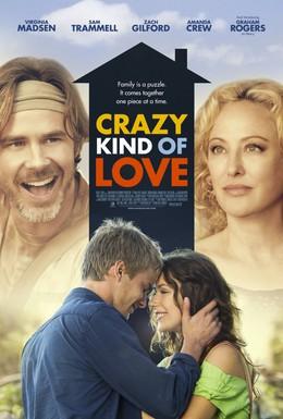 Постер фильма Сумасшедший вид любви (2013)