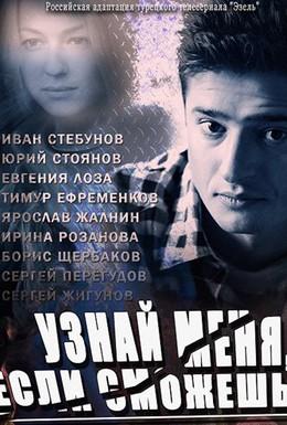 Постер фильма Узнай меня, если сможешь (2014)