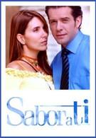 Сила любви (2004)