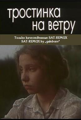 Постер фильма Тростинка на ветру (1980)