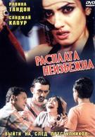 Расплата неизбежна (2004)