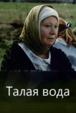 Постер фильма Талая вода (2005)