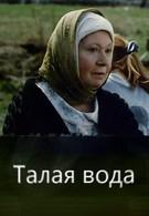 Талая вода (2005)