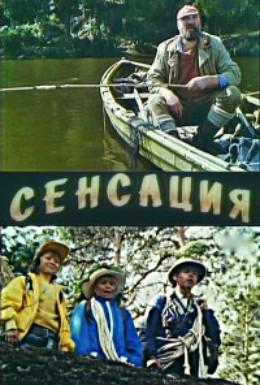 Постер фильма Сенсация (1993)