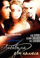 Любовь на два полюса (2011)