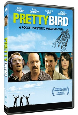 Постер фильма Пташка (2008)