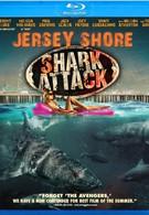 Нападение акул на Нью-Джерси (2012)