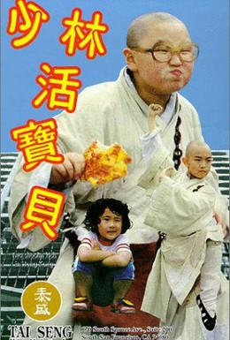 Постер фильма Парни из Шаолиня (1994)