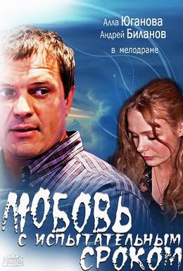 Постер фильма Любовь с испытательным сроком (2013)