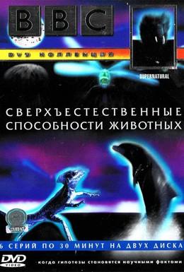 Постер фильма BBC: Сверхъестественные способности животных (1999)