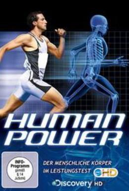 Постер фильма Наука о спорте (2007)