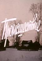 Происшествие (1974)