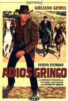 Постер фильма Прощай гринго (1965)