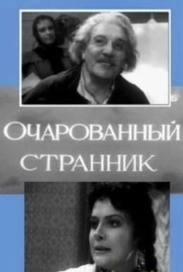 Постер фильма Очарованный странник (1963)