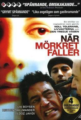 Постер фильма Когда сгустится тьма (2006)