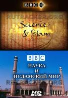 Наука и ислам (2009)
