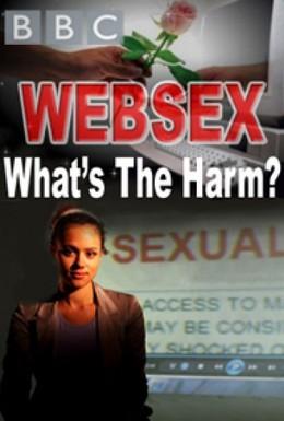 Постер фильма BBC. Секс по интернету. Безопасно? (2012)