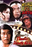 Смертельные удары Шаолиня (1982)
