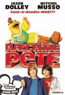 Пит в перьях (2009)
