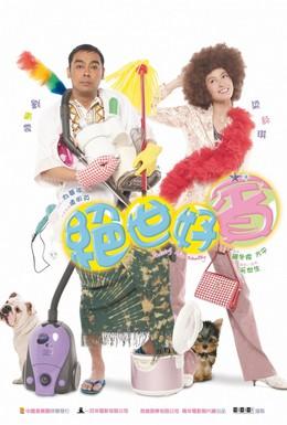 Постер фильма Шофер мисс Богачки (2004)