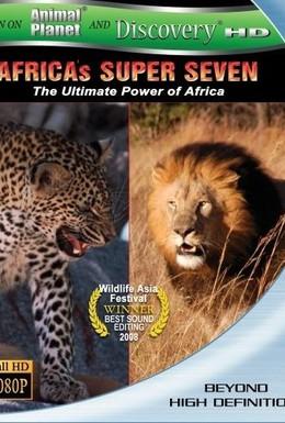 Постер фильма Великолепная семерка Африки (2005)
