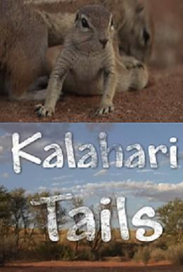 Постер фильма Хвостатые пустыни Калахари (2008)