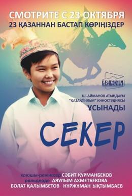 Постер фильма Секер (2009)