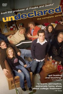 Постер фильма Неопределившиеся (2001)