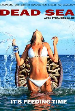Постер фильма Мёртвое море (2014)