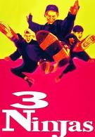 Три ниндзя (1992)