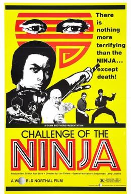 Постер фильма Шаолинь вызывает ниндзя (1978)