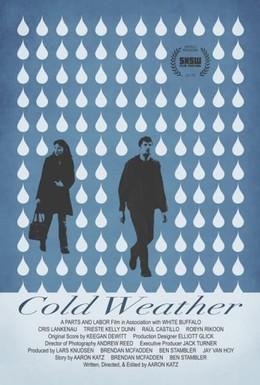Постер фильма Холодная погода (2010)