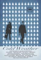 Холодная погода (2010)