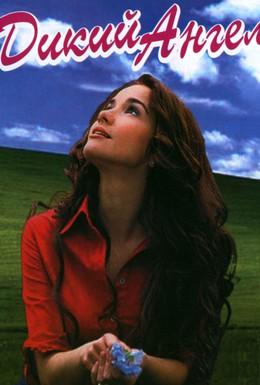 Постер фильма Дикий ангел (1998)