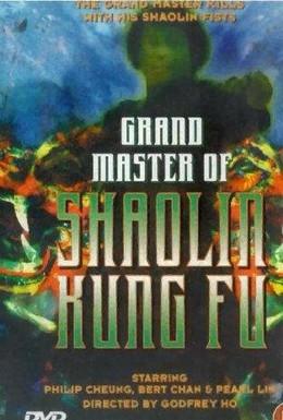 Постер фильма Великий магистр Шаолинь кун-фу (1981)
