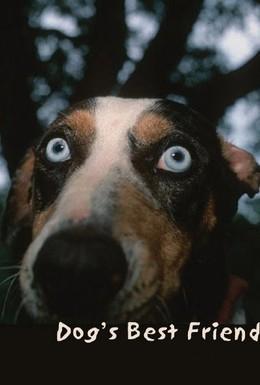 Постер фильма Лучший друг собак (1997)