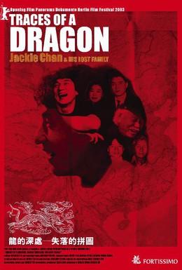 Постер фильма Джеки Чан и его пропавшая семья (2003)