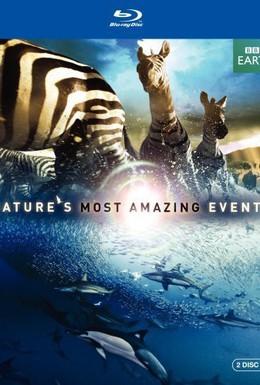 Постер фильма BBC: Величайшие явления природы (2009)